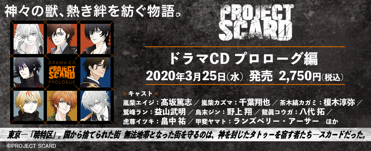 PROJECT SCARD
