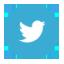 タヌキとキツネ公式Twitter